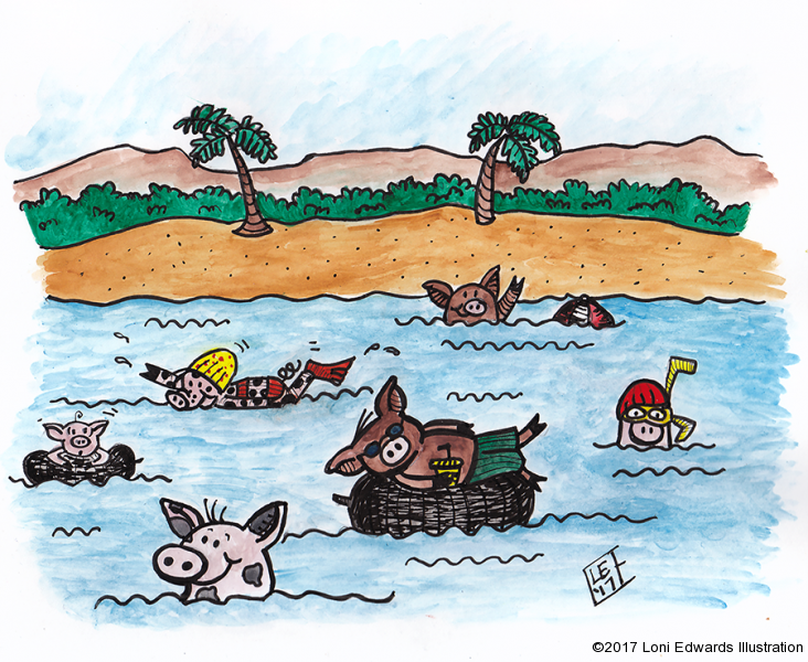 Pig Swimming Party